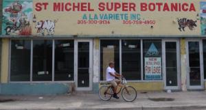 Little Haiti Gentrification Photo